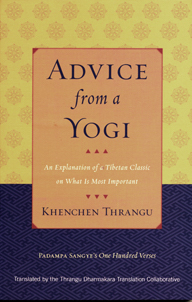 Advice of a Yogi (Book)