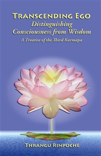 Transcending Ego: Distinguishing Consciousness from Wisdom(Book)